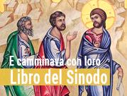 E Camminava con Loro - il primo Sinodo della Diocesi di Alife-Caiazzo